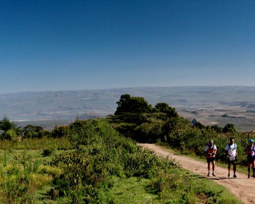 paysages kenya trail