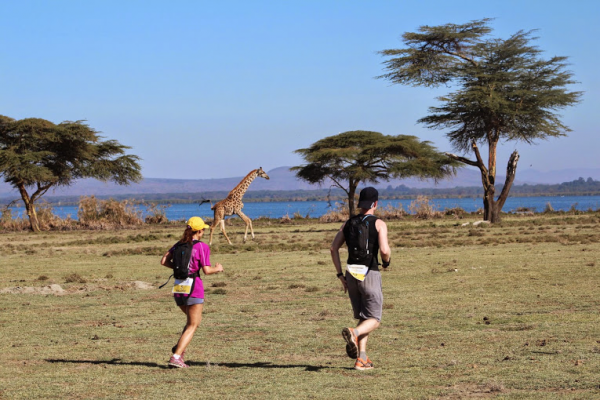 girafe trail kenya