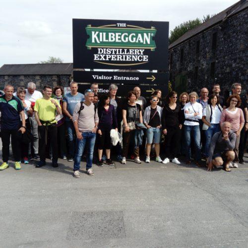 distillerie irlande
