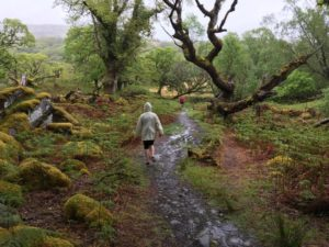 pluie irlande course