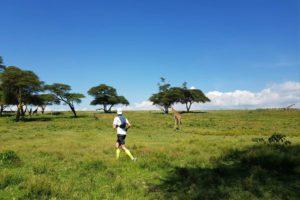 kimbia kenya jour solidaire massai crescent island animaux