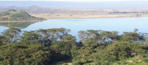 Kimbia Kenya Lac Elementaita